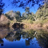 Laguna de Greera