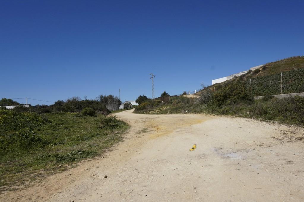 Camino muela