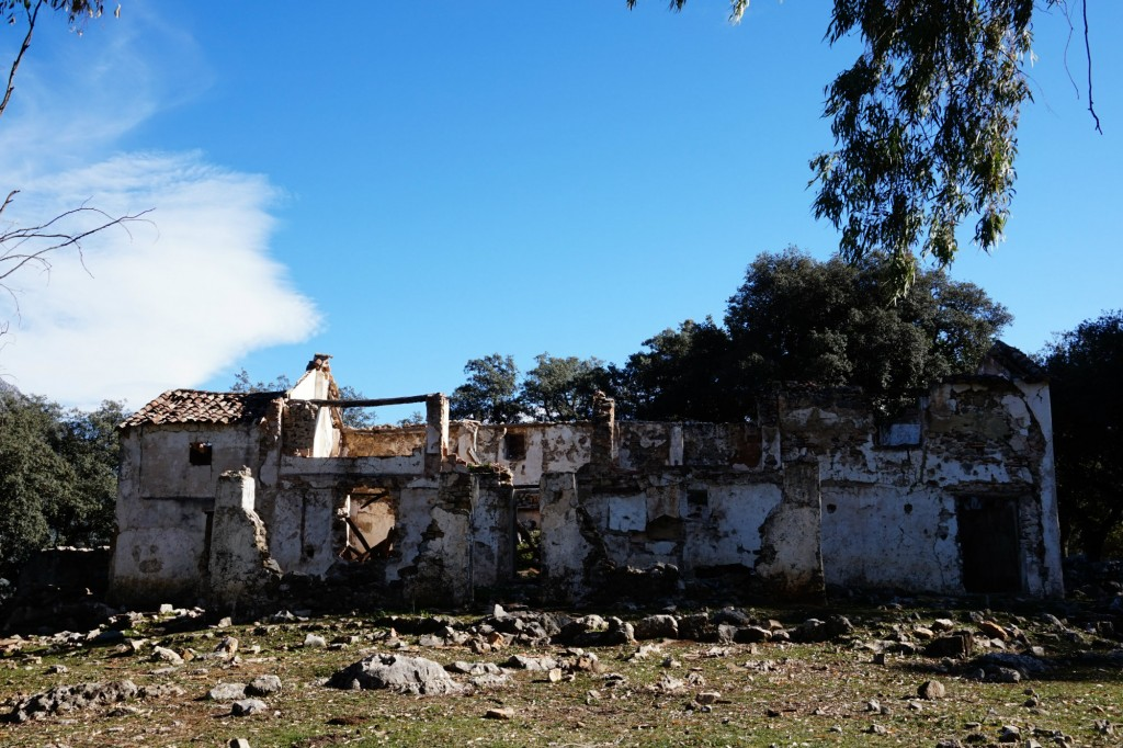 Cortijo de Albarracinejo