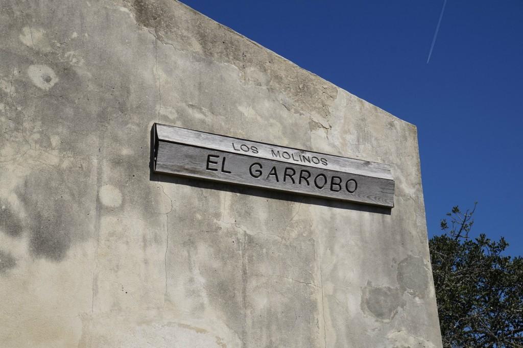 Garrobo cartel