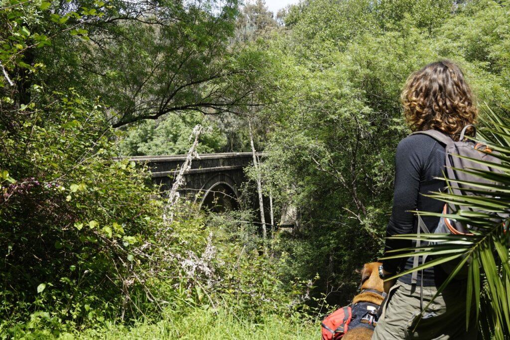 Puente de la Jarandilla