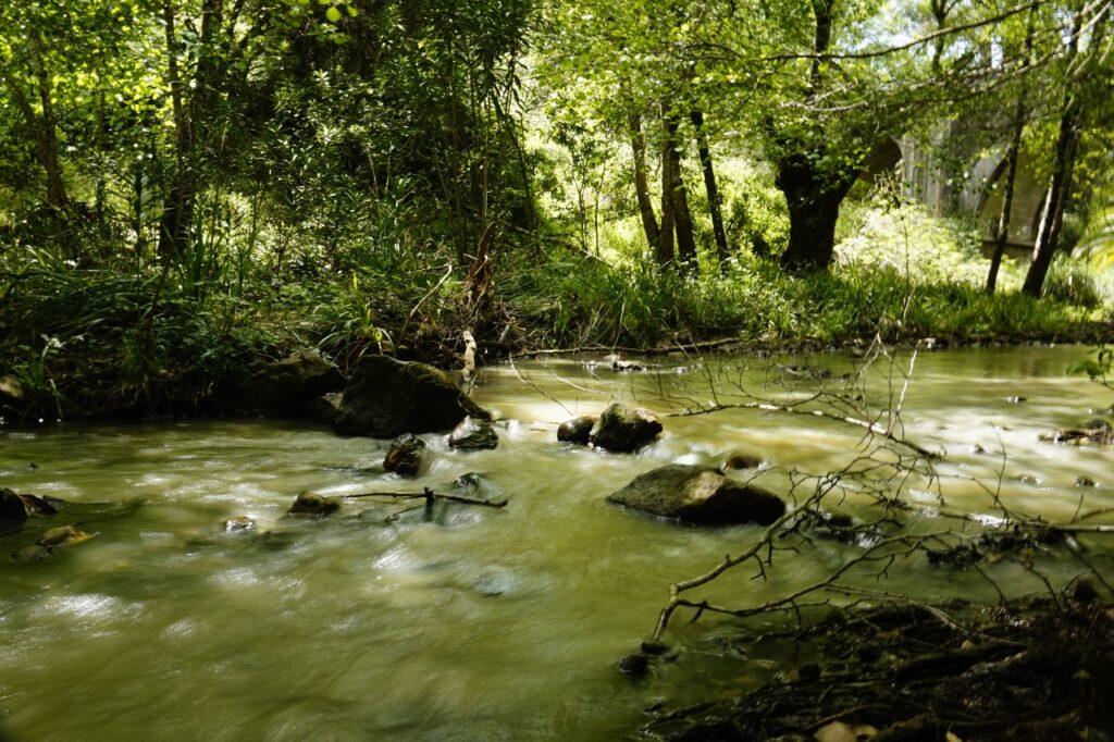 Rio Guadarranque
